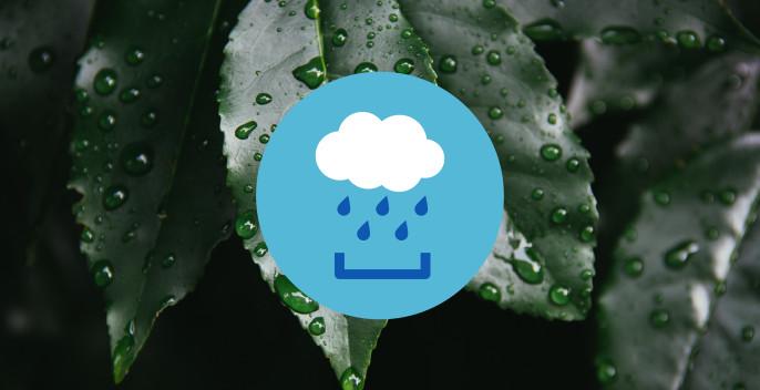 Home_Slide2_Rainwater@2x
